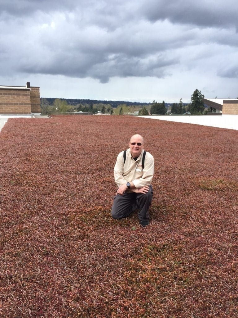 Rick standing on eco-roof