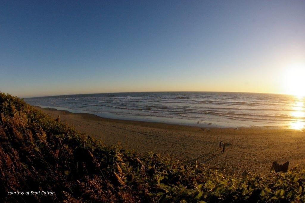 Kalaloch_beach - courtesy of Scott Catron