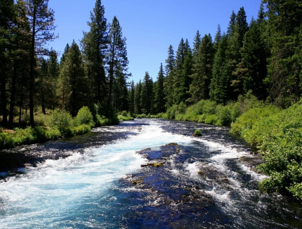 Metolius River -courtesy of WorkinStiff