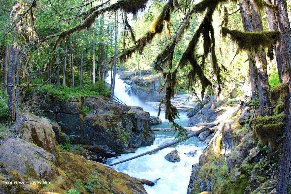 ohanapecosh river - courtesy Davey Nin